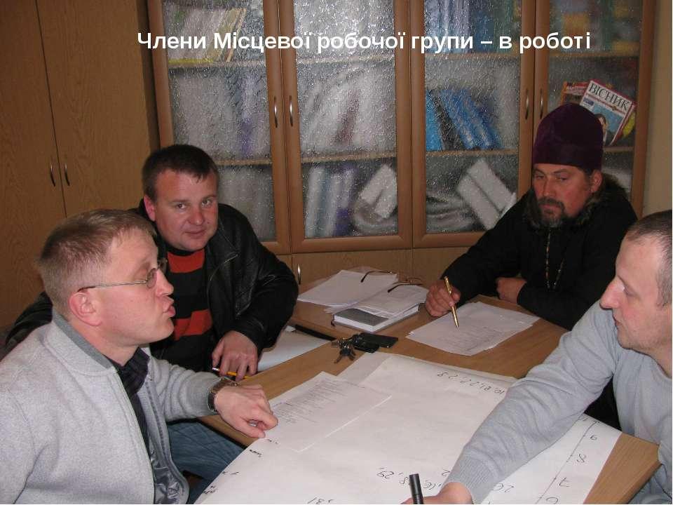 * Члени Місцевої робочої групи – в роботі