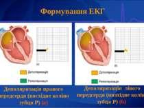 Формування ЕКГ Деполяризація правого передсердя (висхідне коліно зубця Р) (а)...