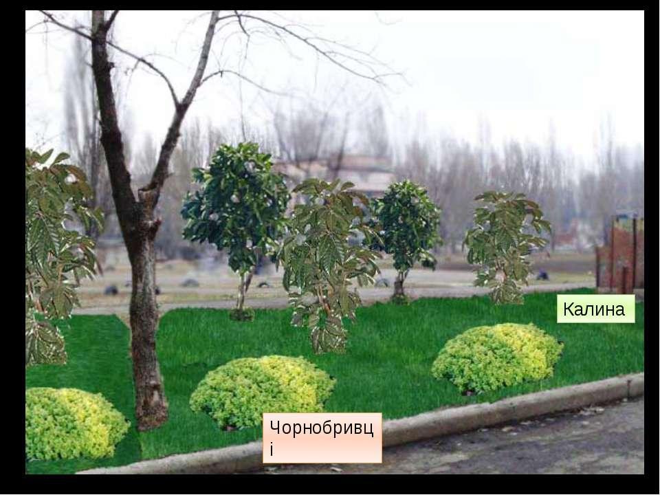 А зараз розглянемо спортивний майданчик Додамо рослинності та деяких дерев Чо...