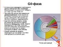 G0-фаза Клітина може виходити з клітинного циклу тимчасово або назавжди. Вона...