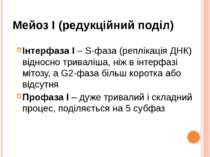 Мейоз I (редукційний поділ) Інтерфаза I – S-фаза (реплікація ДНК) відносно тр...