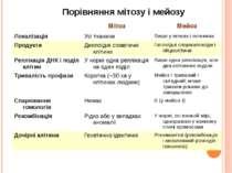 Порівняння мітозу і мейозу Мітоз Мейоз Локалізація Усітканини Лишеуяєчкахіяєч...