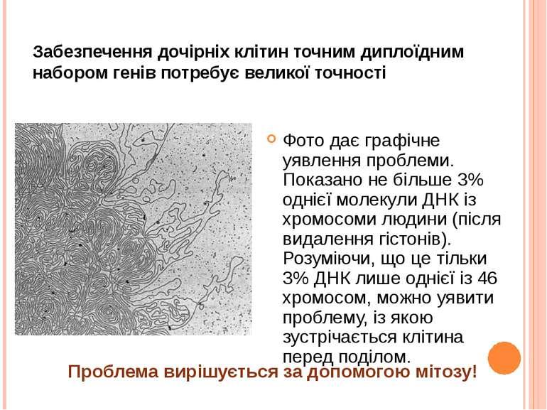 Забезпечення дочірніх клітин точним диплоїдним набором генів потребує великої...