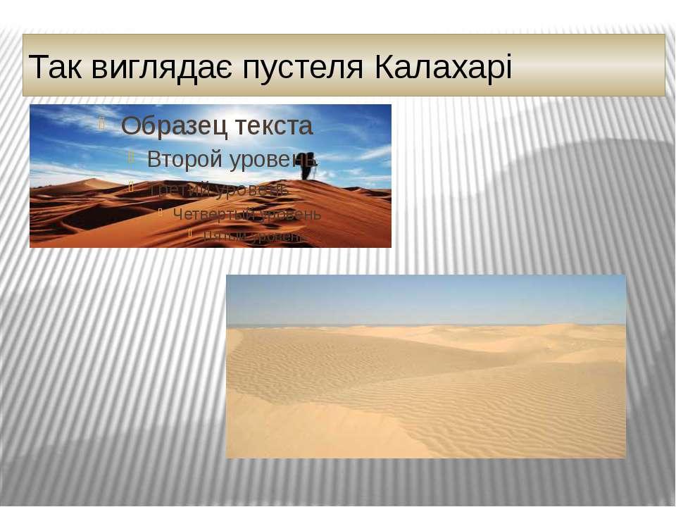 Так виглядає пустеля Калахарі