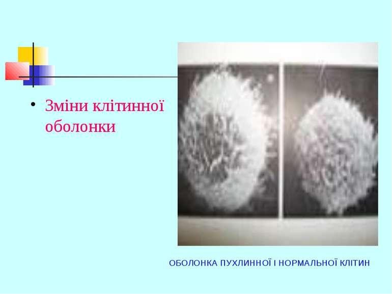 ОБОЛОНКА ПУХЛИННОЇ І НОРМАЛЬНОЇ КЛІТИН Зміни клітинної оболонки