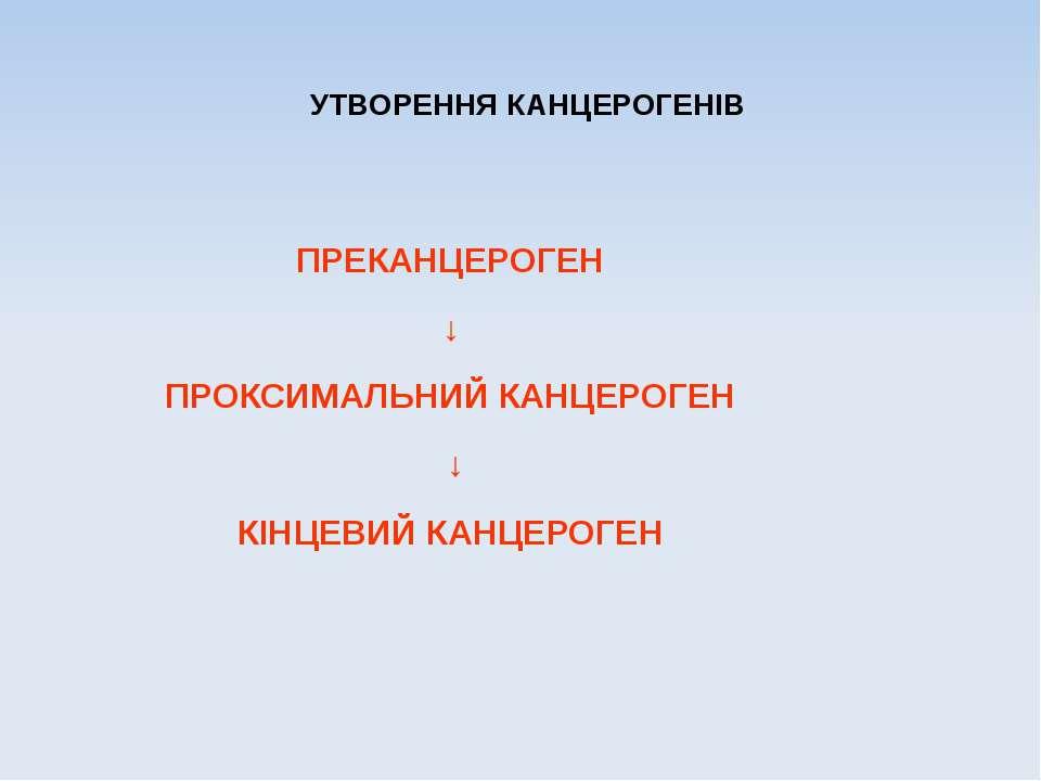 УТВОРЕННЯ КАНЦЕРОГЕНІВ ПРЕКАНЦЕРОГЕН ↓ ПРОКСИМАЛЬНИЙ КАНЦЕРОГЕН ↓ КІНЦЕВИЙ КА...
