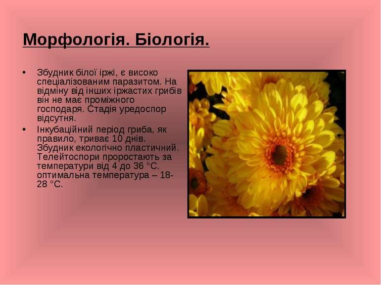Морфологія. Біологія. Збудник білої іржі, є високо спеціалізованим паразитом....