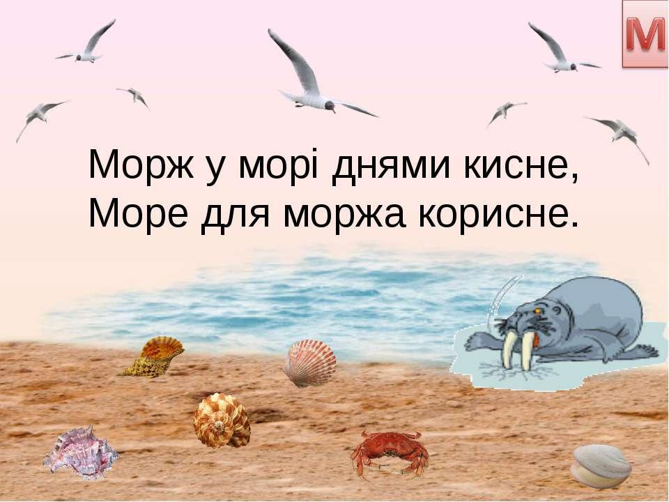 Морж у морі днями кисне, Море для моржа корисне.