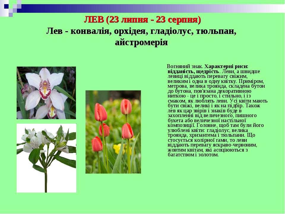 ЛЕВ (23 липня - 23 серпня) Лев - конвалія, орхідея, гладіолус, тюльпан, айстр...