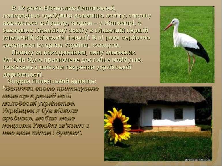 В 12 років В'ячеслав Липинський, попередньо здобувши домашню освіту, спершу н...
