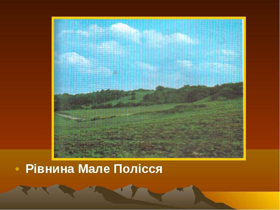Рівнина Мале Полісся
