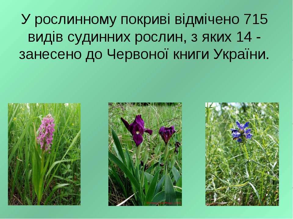 У рослинному покриві відмічено 715 видів судинних рослин, з яких 14 - занесен...