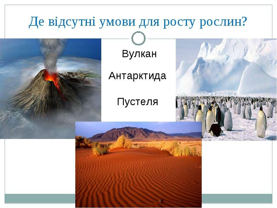 Де відсутні умови для росту рослин? Вулкан Антарктида Пустеля