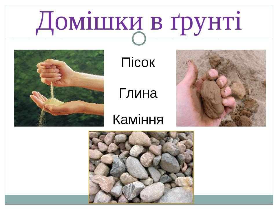 Домішки в ґрунті Пісок Глина Каміння