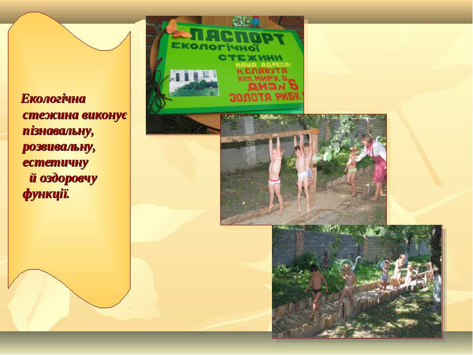 Екологічна стежина виконує пізнавальну, розвивальну, естетичну й оздоровчу фу...