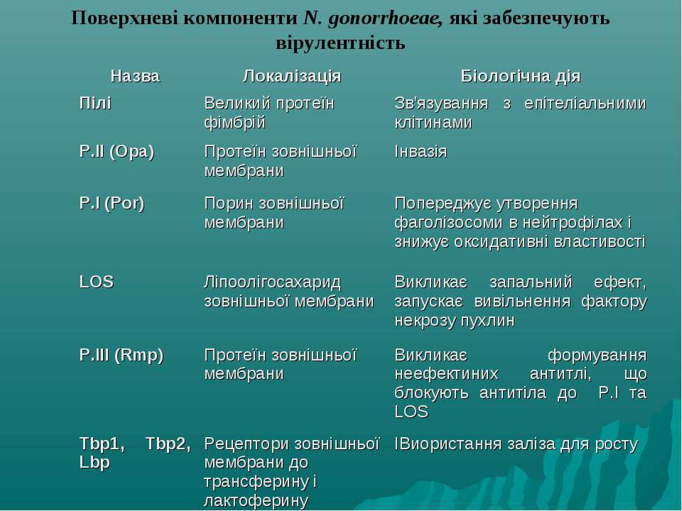 Поверхневі компоненти N. gonorrhoeae, які забезпечують вірулентність Назва Ло...