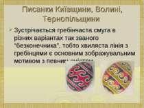 Писанки Київщини, Волині, Тернопільщини Зустрічається гребінчаста смуга в різ...
