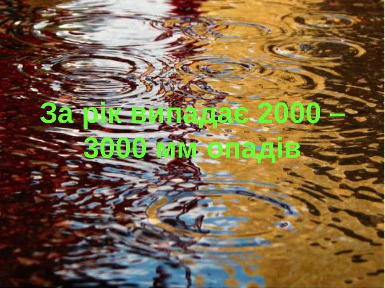 За рік випадає 2000 – 3000 мм опадів
