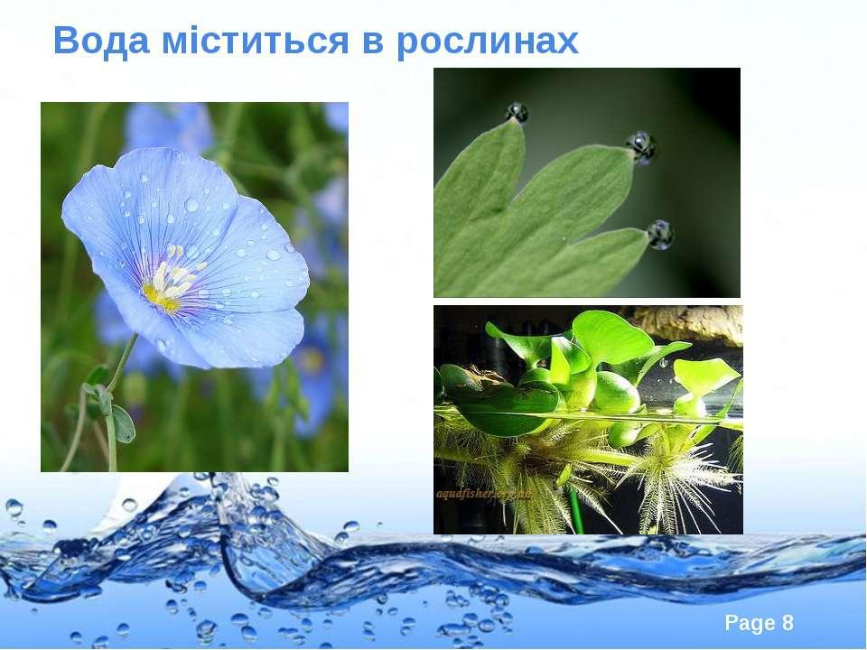 Вода міститься в рослинах Page *