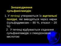 Знешкодження сульфаніламідів:  1. У печінці утворюються їх ацетильні похідн...