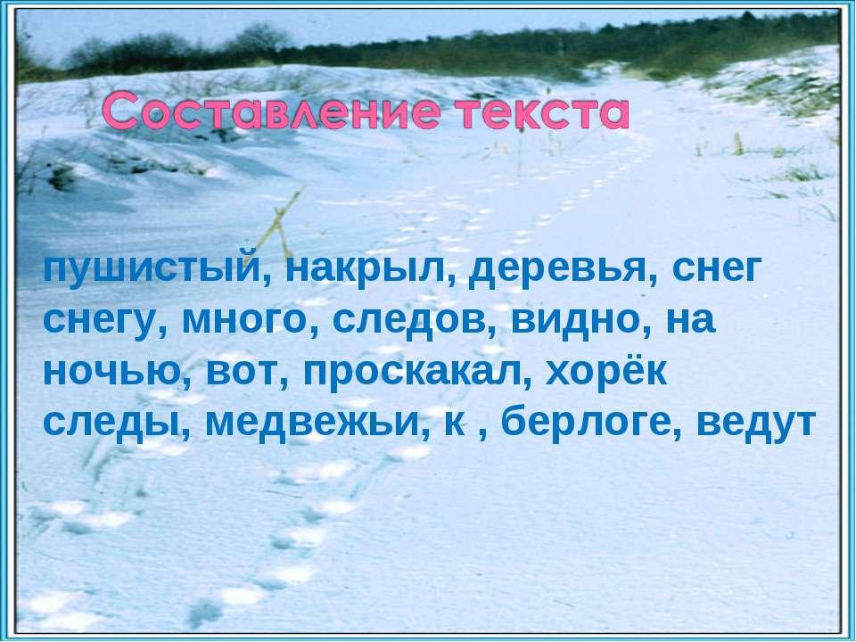 пушистый, накрыл, деревья, снег снегу, много, следов, видно, на ночью, вот, п...