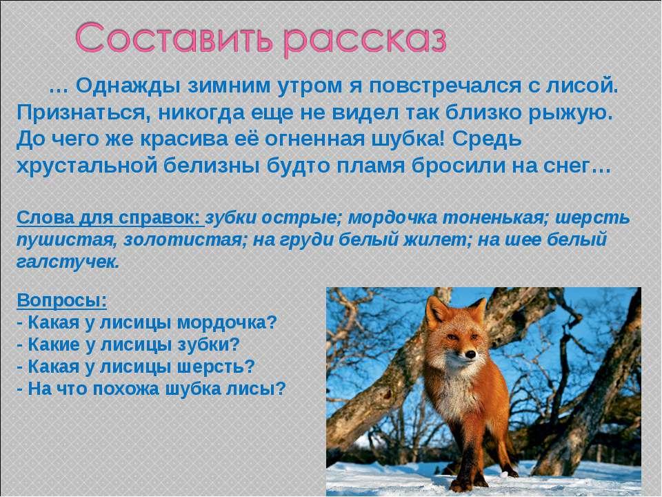 … Однажды зимним утром я повстречался с лисой. Признаться, никогда еще не вид...