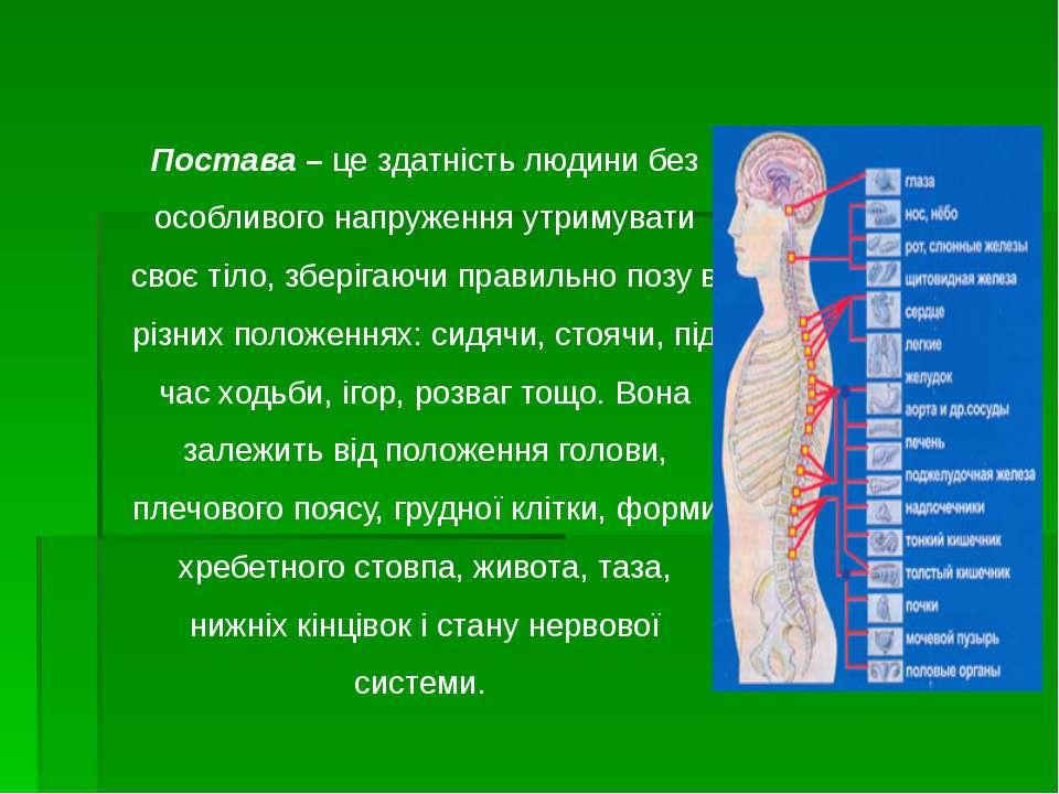Постава – це здатність людини без особливого напруження утримувати своє тіло,...