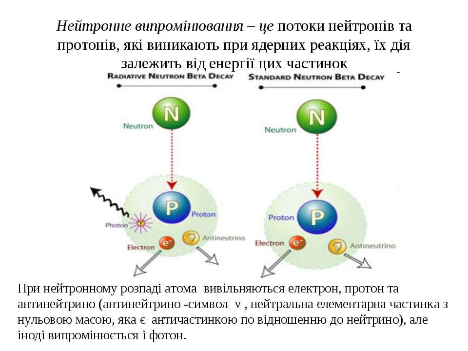 Нейтронне випромінювання – це потоки нейтронів та протонів, які виникають при...