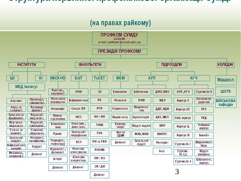 Структура первинної профспілкової організації СумДУ (на правах райкому) ПРОФК...