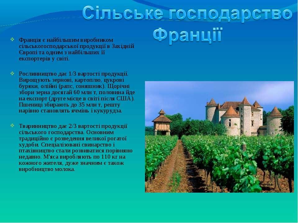 Франція є найбільшим виробником сільськогосподарської продукції в Західній Єв...