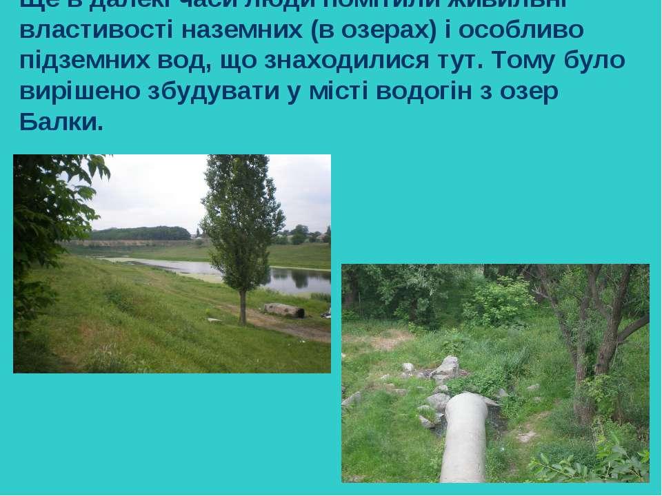 Ще в далекі часи люди помітили живильні властивості наземних (в озерах) і осо...