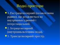 Водні простори 1. Екстрацелюлярний (позаклітинна рідина), що розділяється на ...