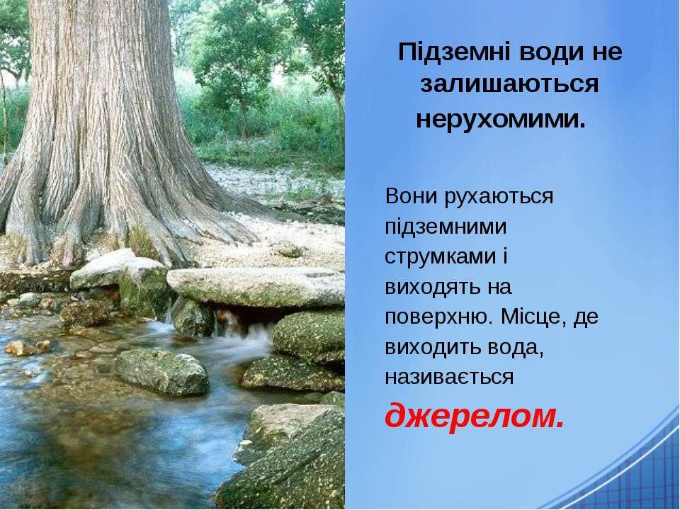 Підземні води не залишаються нерухомими. Вони рухаються підземними струмками ...