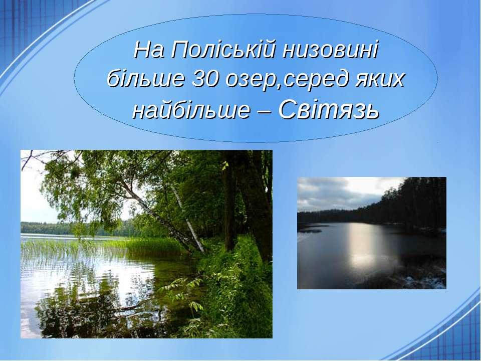 На Поліській низовині більше 30 озер,серед яких найбільше – Світязь