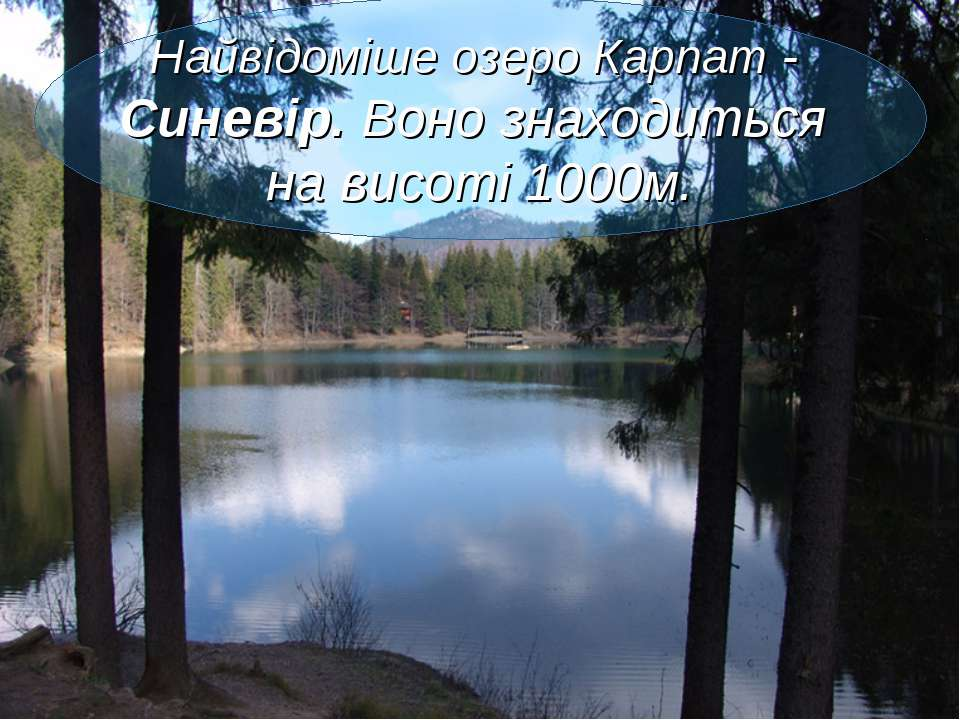 Найвідоміше озеро Карпат - Синевір. Воно знаходиться на висоті 1000м.