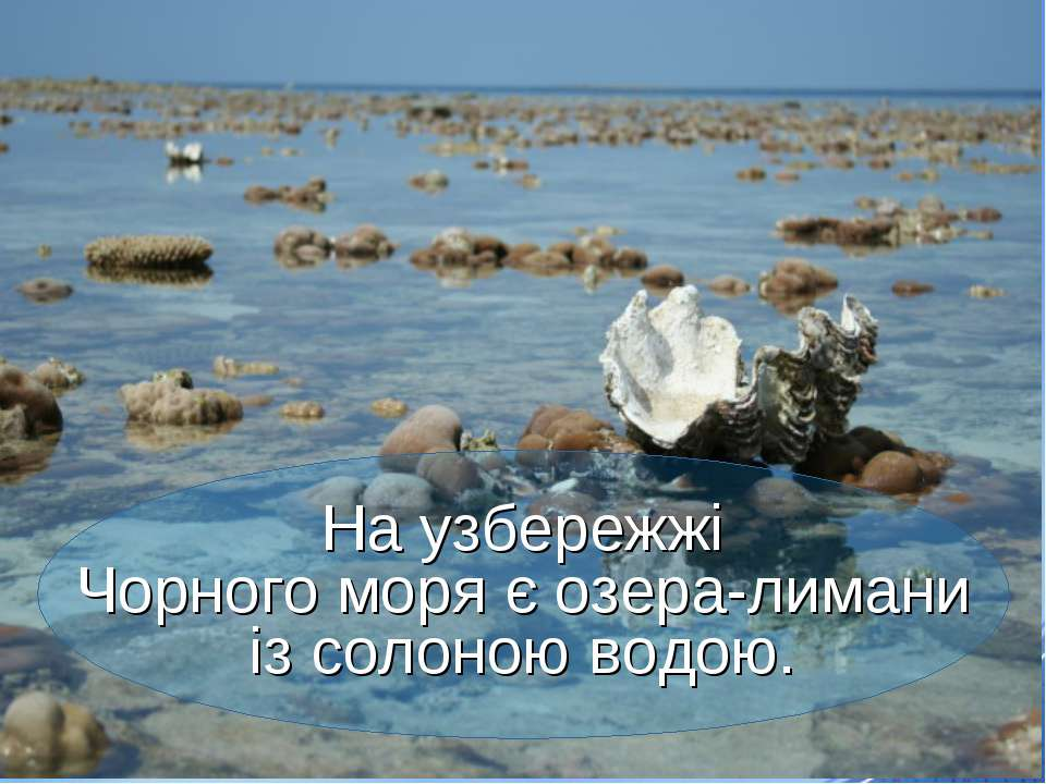 На узбережжі Чорного моря є озера-лимани із солоною водою.