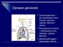 Органи дихання Органи дихання – це порожнина носа, глотка, гортань, трахея, б...