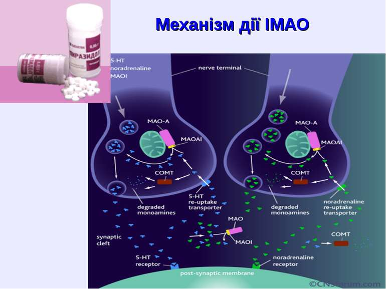 Механізм дії ІМАО