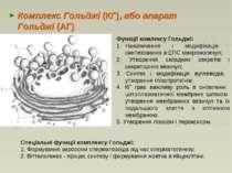 Комплекс Гольджі (КГ), або апарат Гольджі (АГ) Функції комлексу Гольджі: Нако...