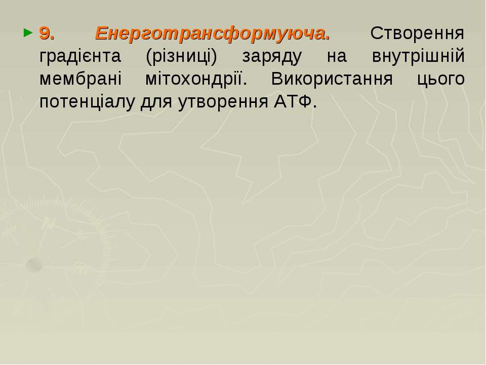 9. Енерготрансформуюча. Створення градієнта (різниці) заряду на внутрішній ме...