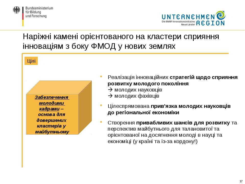 Реалізація інноваційних стратегій щодо сприяння розвитку молодого покоління м...