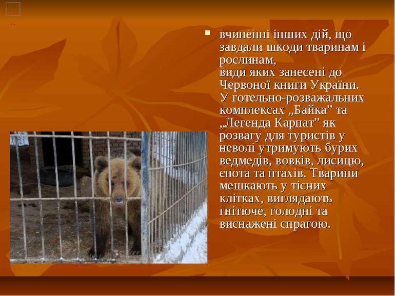 вчиненні інших дій, що завдали шкоди тваринам і рослинам, види яких занесені ...