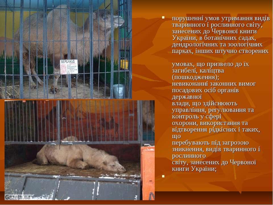 порушенні умов утримання видів тваринного і рослинного світу, занесених до Че...