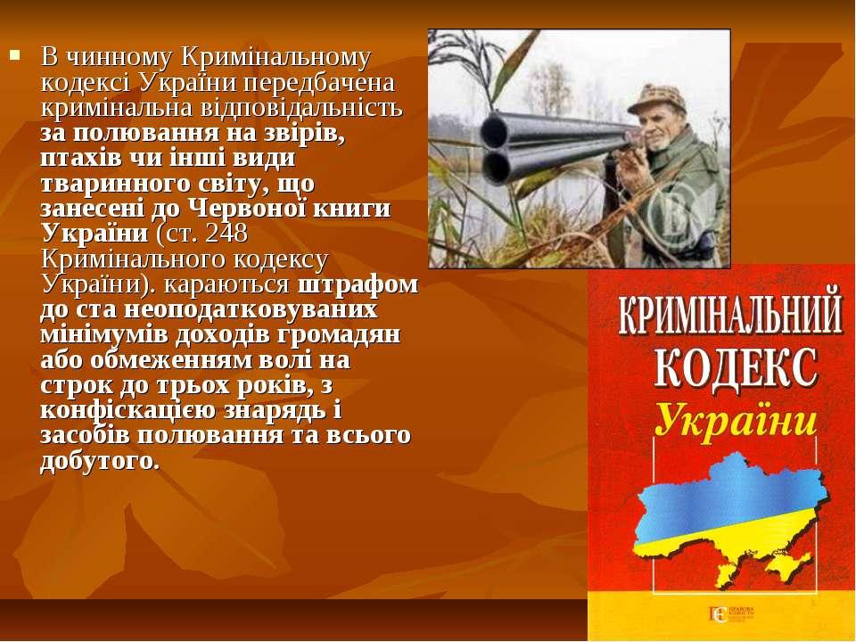 В чинному Кримінальному кодексі України передбачена кримінальна відповідальні...