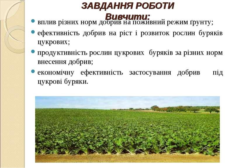 ЗАВДАННЯ РОБОТИ Вивчити: вплив різних норм добрив на поживний режим ґрунту; е...