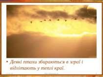 Деякі птахи збираються в зграї і відлітають у теплі краї. * http://aida.ucoz....