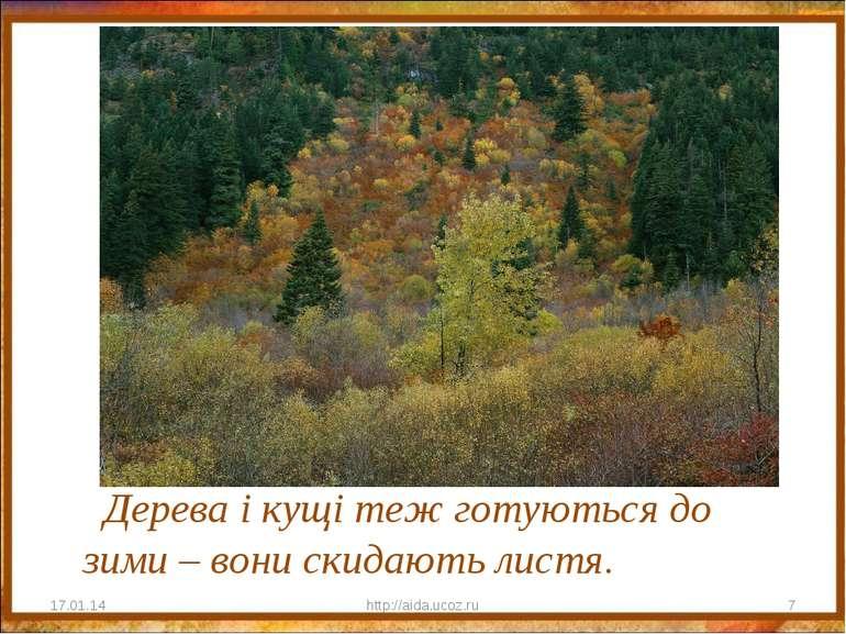 Дерева і кущі теж готуються до зими – вони скидають листя. * http://aida.ucoz...