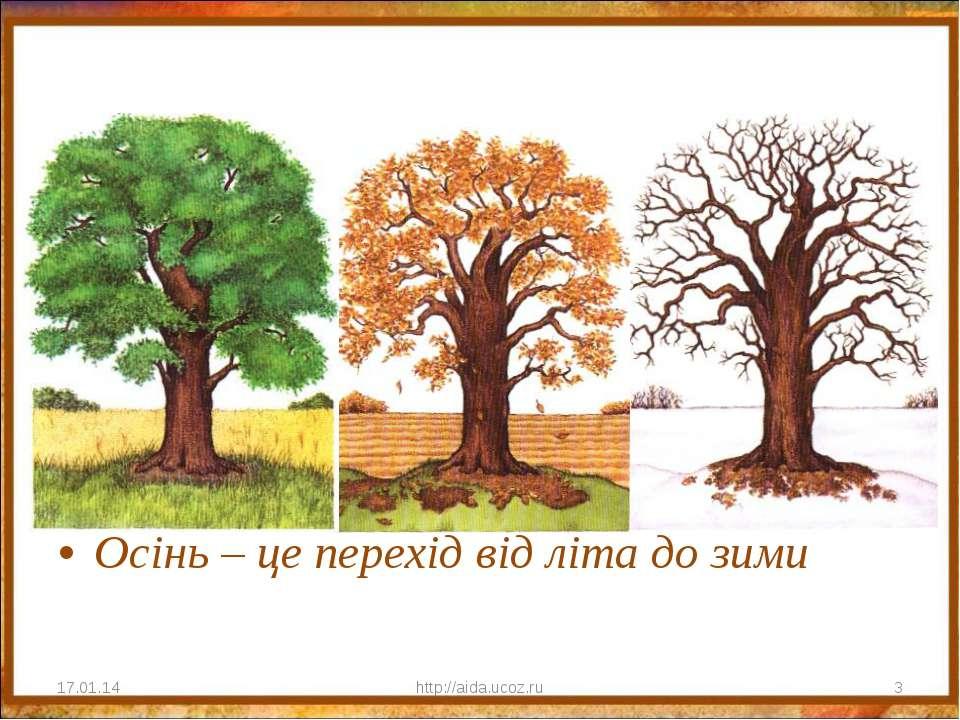 Осінь – це перехід від літа до зими * http://aida.ucoz.ru * http://aida.ucoz.ru