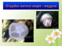 Отруйні жителі моря - медузи