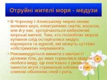 Отруйні жителі моря - медузи В Чорному і Азовському морях немає великих акул,...